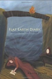 cover of Flat Earth Diary Notes from the Bridge